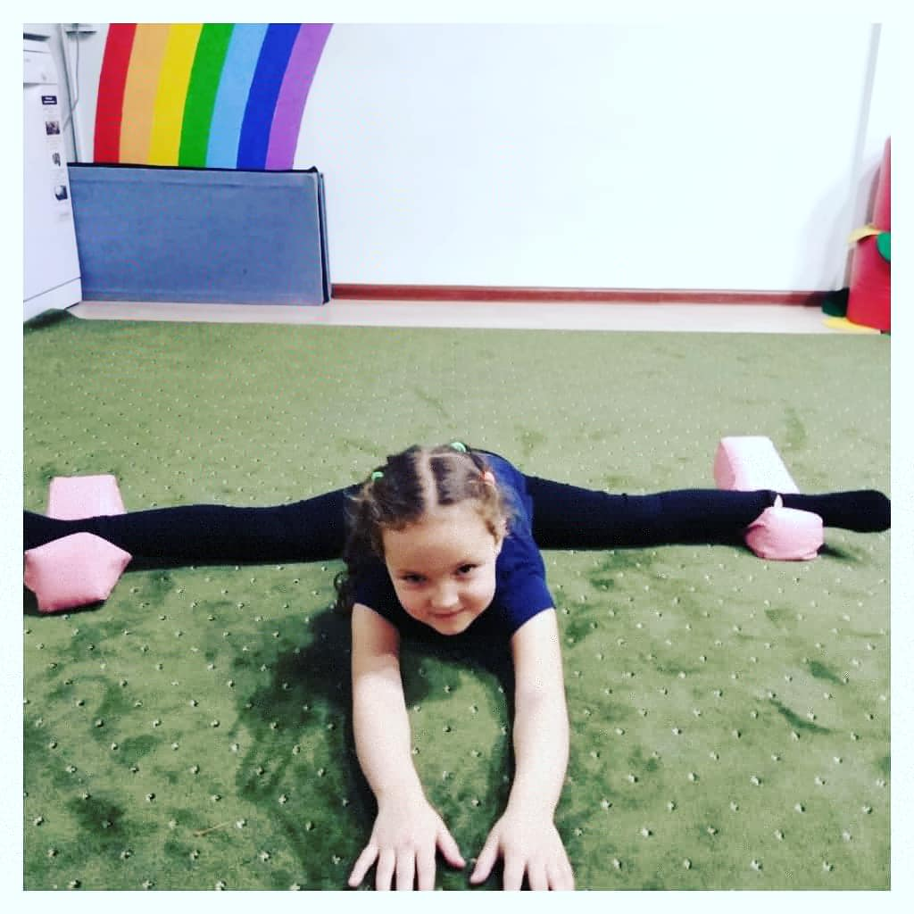Художественная гимнастика 3